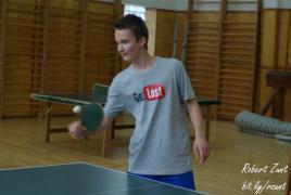 Stolní tenis - Viktor Procházka