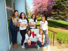 Hajdy opět boduje v soutěži hlídek mladých zdravotníků